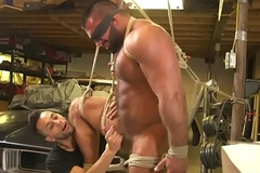 Tiedup bear edged coupled with taunted by young twink